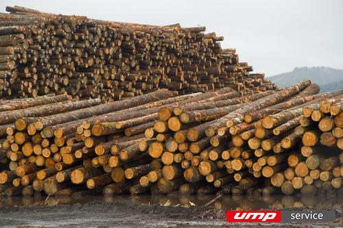 В Хабаровском крае откроют крупное деревообрабатывающее предприятие