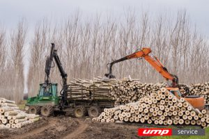 Под Костромой откроется крупный инвестиционный проект в области переработки древесных материалов