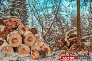 Новый комплекс по переработке древесины будет построен в Сямже