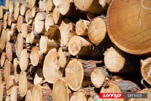 Деревоперерабатывающие предприятия получат бесплатное топливо из отходов